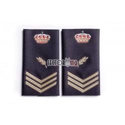 Hombreras de oficial Policía Nacional